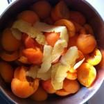 Salsa di albicocche fresche